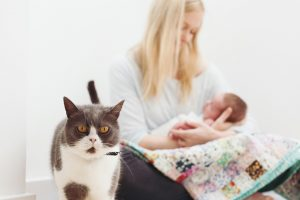 family cat and mum with newborn behind