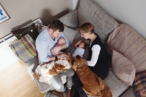 view from the topp of family with newborns and two dogs